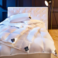 Одеяло Brinkhaus CHALET LIGHT DUVET 100% пух 650 г 200x220 см
